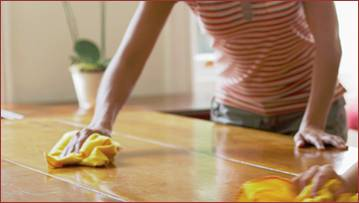 Tuesday tips how to clean your furniture not quite susie homemaker - Tips for dusting your home ...