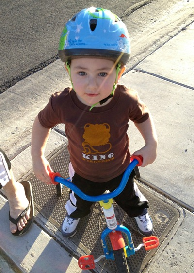 Happy Toddler on Tricycle