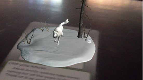 artic wolf augmented reality