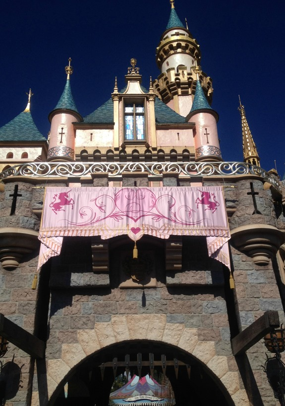 Disneyland Castle
