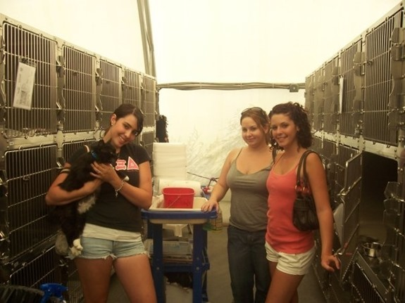 Volunteering, Rescuing & Pledging for the Animal Foundation