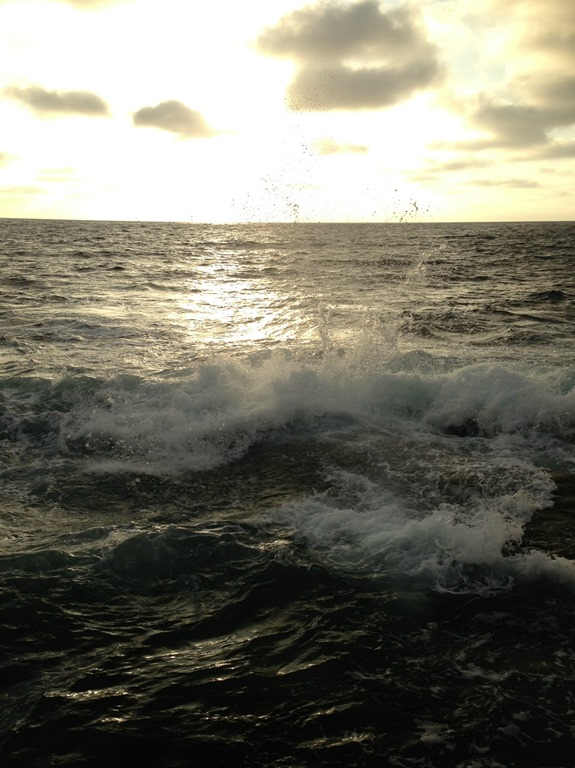 Waves Crashing in La Jolla