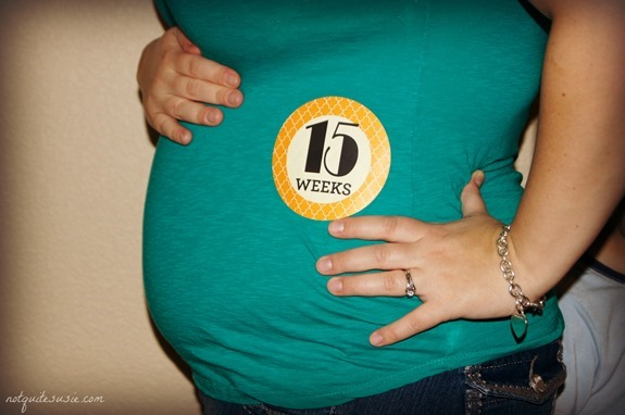 15 weeks pregnant belly plus size 15 week baby belly bump photo