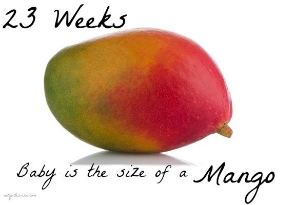my pregnancy journal weeks 22 amp 23   not quite susie