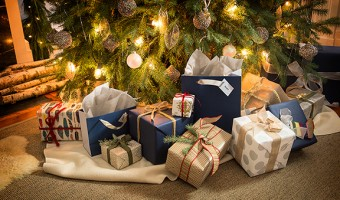 Great Holiday Gift Ideas from Best Buy
