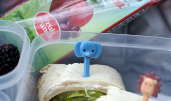 Lunchbox Hacks for Picky Eaters