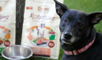 Mix Up Your Dog's Menu- Not Their Stomach- with NUTRO ROTATIONS