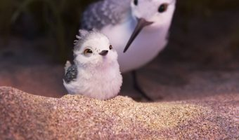 "Sneak Peek: Pixar's Animated Short ""Piper"""