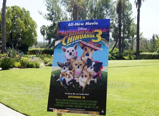 beverly hills chihuahua 3 poster