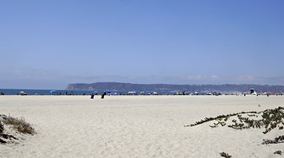 beach proposal wm