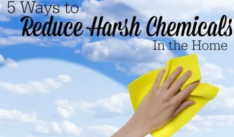 5 Ways to Reduce Harsh Chemicals in the Home