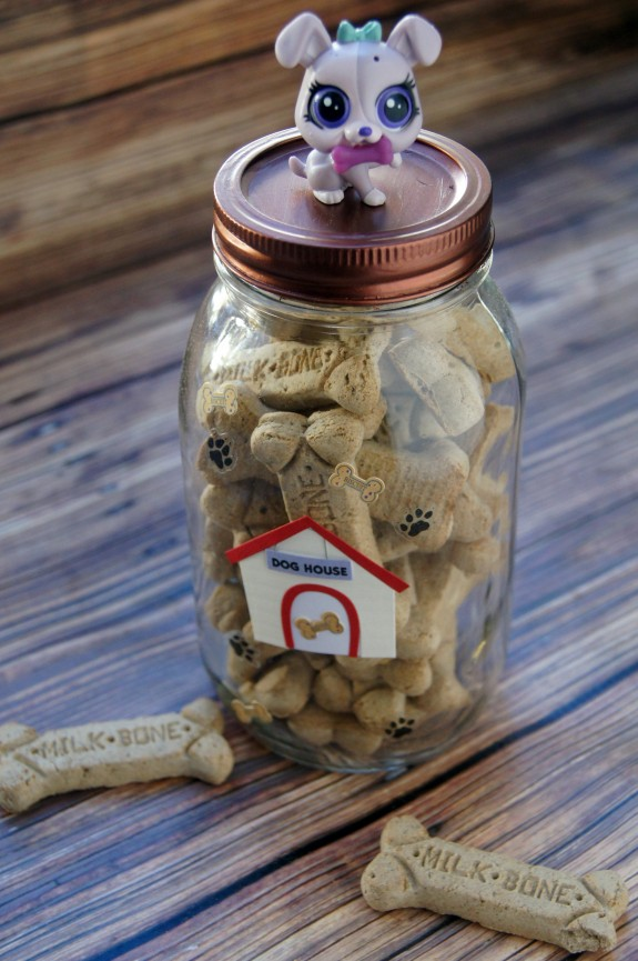 DIY Dog Treat Jar Craft Idea