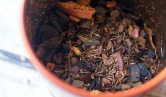 Pumpkin Spice Brulee and Spiced Apple Cider Are Back at Teavana!