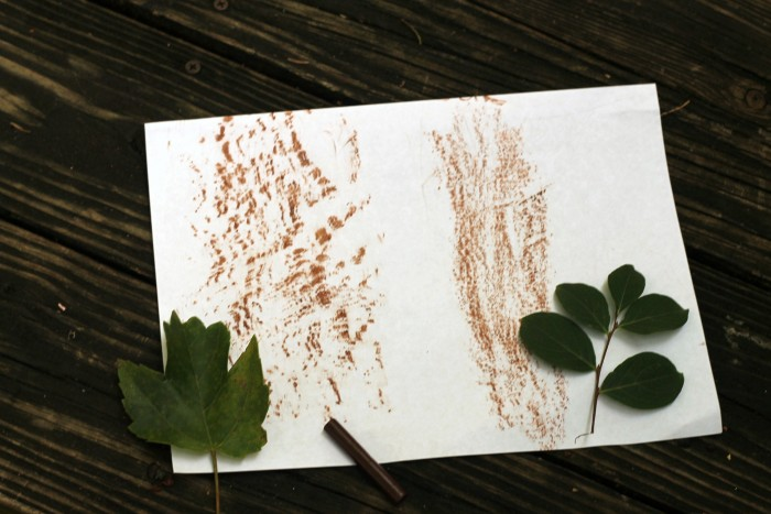 Make leaf etchings this summer! Find more fun backyard activities in this post!