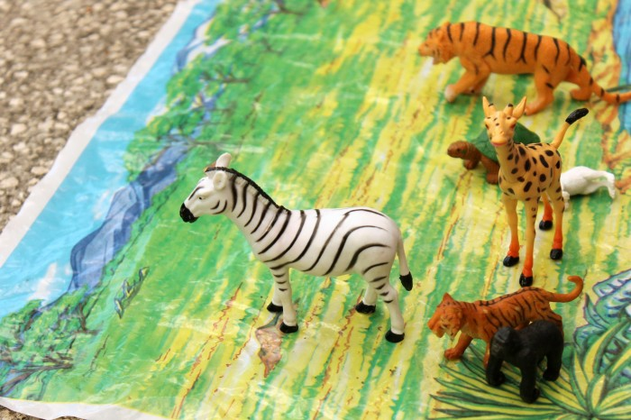 Learning Through Play- Zoo Enrichment Activities