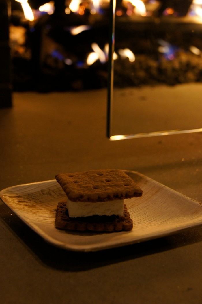 Campfire smores with The Good Dinosaur Director and Crew