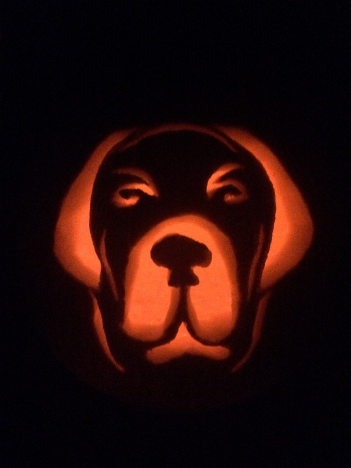 How to Carve a Pumpkin That Looks Like Your Pet