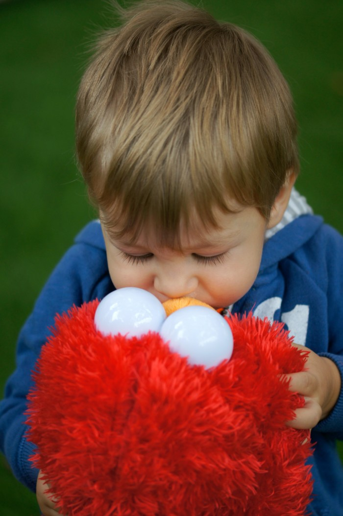 Zac with Play All Day Elmo