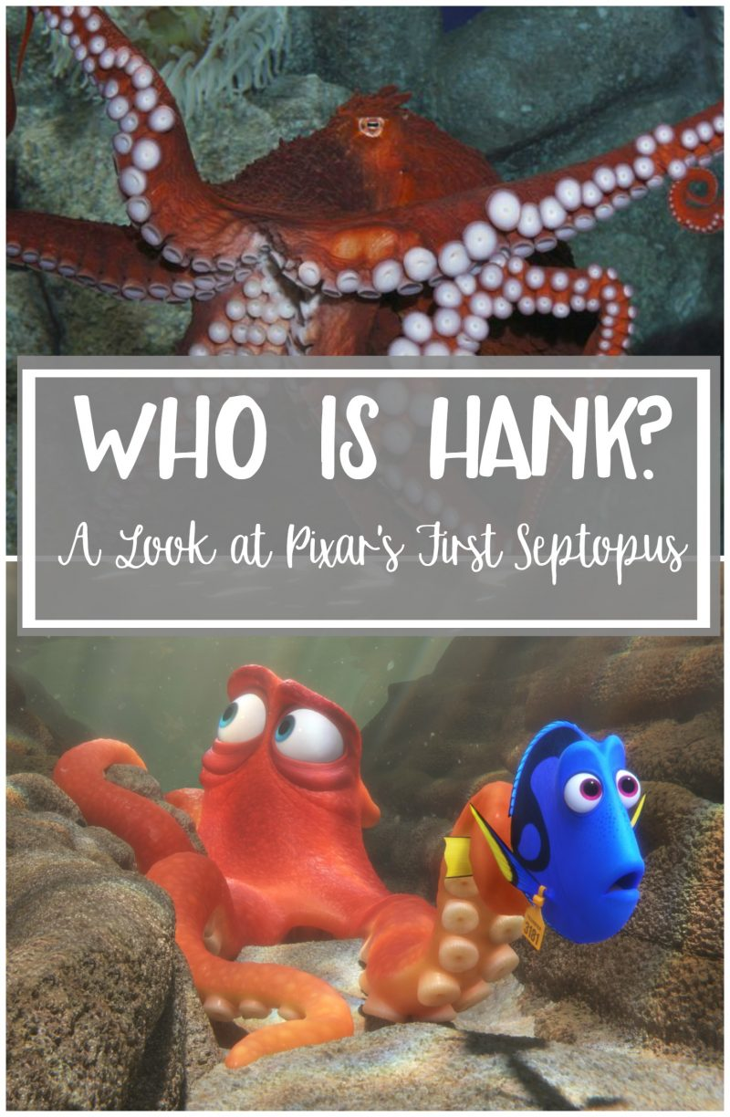 Who is Hank? He's one of the awesome new characters in Disney Pixar's Finding Dory! Cranky but funny, he steals the show in the trailer! Find out more about how Hank was animated and what it's like touching a REAL Giant Pacific Octopus!