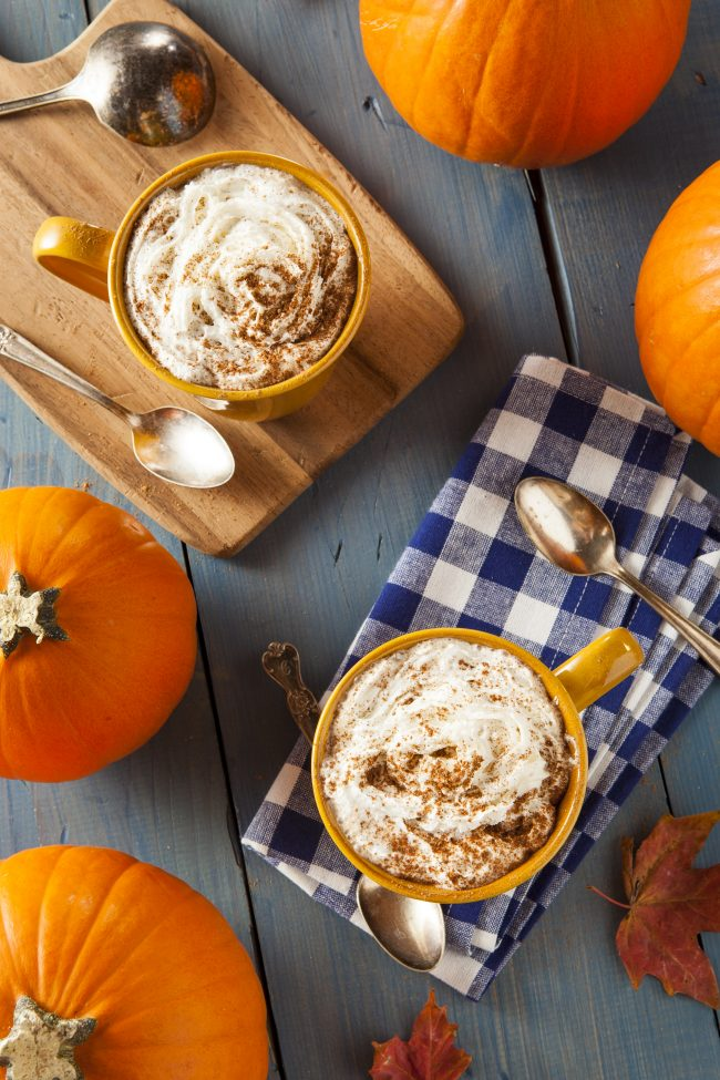 It's fall, and that means it's time for Pumpkin Spice everything! Get 50 delicious recipes- including a Pumpkin Spice Latte recipe {not from a mix!}, cookies, cake, creamer, Frappuccino, cupcakes, and even muffins! There are enough recipes here to last you all season long.
