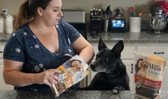 Why We Treat Our Senior Dog to Milo's Kitchen Homestyle Dog Treats
