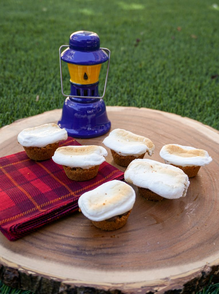 What's better than s'mores over the campfire on a summer evening? Not much, but you can enjoy s'mores even if you're stuck indoors! This easy S'mores Bites recipe is super quick and easy to make at home, using just the usual s'mores ingredients. They make a great party dessert idea or a great summer snack!